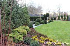 Ogród z lustrem - strona 116 - Forum ogrodnicze - Ogrodowisko