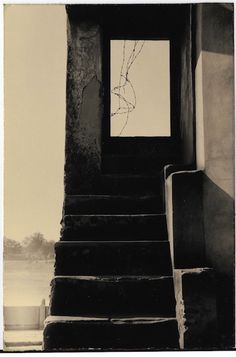 Gallery Fifty One — Masao Yamamoto Yamamoto, Famous Photographers, Nature Scenes, Past, Art Photography, Gallery, Artist, Crete, Masters