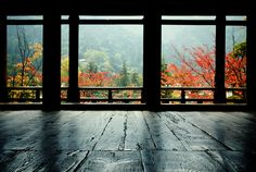old wood floors Ventana Windows, Old Wood Floors, Autumn Cozy, Autumn Trees, Fall Is Here, Window View, Through The Window, Great View, My Dream Home