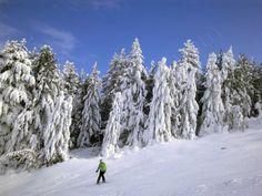 Borovets ski resort, Bulgaria Ski Season, Bulgaria, Skiing, Travel, Outdoor, Ski, Outdoors, Viajes, Destinations