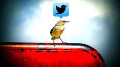 6 de cada 10 personas que compartan este artículo en Twitter no lo habrán abierto Foto: Uncalno Tekno / Flickr