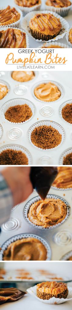Pumpkin Greek yogurt muffin bites with butterscotch pudding, a gingersnap crumb crust, and a caramel sauce drizzle topping. Your favorite new go-to healthy desserts recipe! // Live Eat Learn