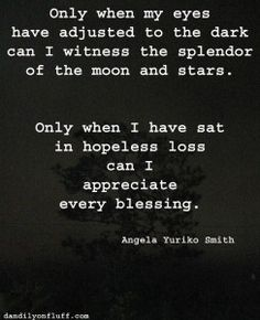 only when my eyes have adjusted to the dark can i witness the splendor of the moon and stars.  only when i have sat in hopeless loss can i appreciate every blessing.
