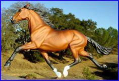Αποτέλεσμα εικόνας για horse pacer