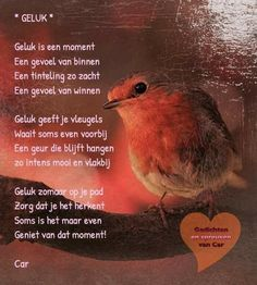 Best Quotes, Love Quotes, Inspirational Quotes, Dutch Quotes, Curly, Cool Writing, Haiku, Make Me Happy, Love Life