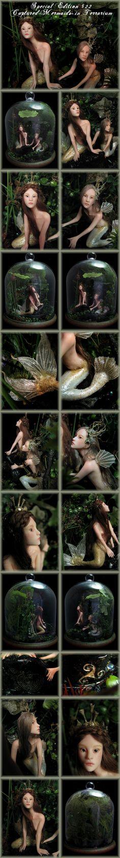 Nenúfar Blanco ~ SE#22 Captured Mermaids in Terrarium