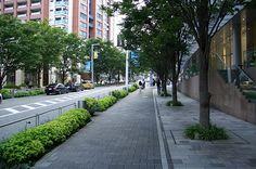 calçada verde