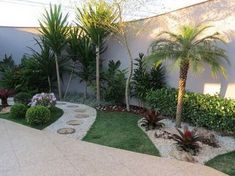 50 Florida Landscaping Ideas Front Yards Curb Appeal Palm Trees_50