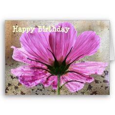 Pink Comos Flower Cards