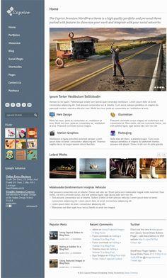 Caprice Premium Wordpress Theme - Development of premium WordPress theme