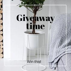 Hello! It's giveaway time! I have teamed up with the amazing @reallywellmade store for one of you lucky guys to win your own Menu Norm Architects wire base and pot in white. Just like mine! And let me tell you it's so beautiful  I am soooo excited!! And the giveaway is worldwide  Here goes.... For a chance to win  1. FOLLOW ME @aboutthishaus  2. GO FOLLOW @reallywellmade  3. TAG YOUR FRIENDS BELOW THIS PIC  ......................4. YOU CAN ALSO SHARE THIS IMAGE ON YOUR OWN FEED FOR AN EXTRA…