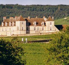 Balade en calèche au coeur de la Côte de Nuits à Nuits-Saint-Georges - Côte-d'Or en Bourgogne | Côte-d'Or Tourisme