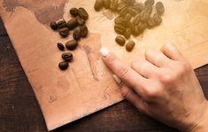Bár a kávét csak néhány évszázada fogyasszuk ital formájában, története majd ezer évre nyúlik vissza. A kávé 2 nagy csoportját különböztetjük meg, az arabica és a robusta kávét. A két fajnak eltérő származási helyet tulajdonítanak. Úgy tartják, hogy az arabica kávé őshazája Dél-Szudán, valamint Etiópia. Ezzel szemben a robusta kávé Nyugat-Afrikából származik. Kezdetben a kávészemeket nem pörkölték. Nyersen fogyasztották a kávécseresznyét és annak levelét is. Már akkor tudták, hogy élénkítő… Haiti, Cinnamon Sticks, Jamaica, South America, Wings, German, Design, Free, Concept Of Economics