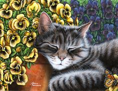 Afternoon Nap, Horizontal by Marilyn Barkhouse