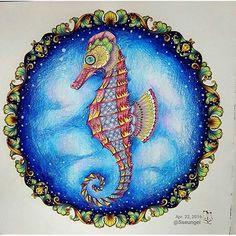Uma excelente semana a todos  Colorido by @sseungei . . . #drawing #secretgarden #jardimsecreto #johannabasford #jardimsecretolove #staedtler #mycreativeescape #coloringbook #polychromos #enchantedforest #lostocean #draw #coloring #pencil #florestaencantada #crayola #stabilo #colors#love#adultcoloring #creative #colouring#colour#artist #oceanoperdido #goodafternon#bomdia