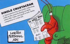 #JoesCrabShack  lobster personal ad