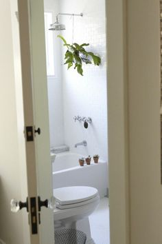 Houseplants for the Bath - Gardenista Not the location but - Staghorn ferns like moist climates and generally require a lot of maneuvering to keep them properly watered. Instead of fussing over yours, give it a permanent home in a shower Bathroom Wall Cabinets, Ikea Bathroom, Bathroom Plants, Boho Bathroom, Modern Bathroom, Small Bathroom, Bathroom Ideas, White Bathroom, Bathroom Furniture