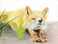 好累啊~ 伸個懶腰 再繼續加班 #art #illustration #color #painting #cat #boots #cold #rain #clammy #fox