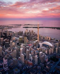 Toronto Tourism, Real Estate Broker, In 2019, Best Cities, Cn Tower, Good Things, Gta, Building, Travel