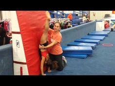 Front Limber Staff Ed Gymnastics Lessons, Gymnastics Coaching, Gymnastics Workout, Teach Dance, Staff Training, Acro, Stand Up, Lesson Plans, Drill