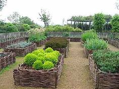 Wattle Raised Beds for the garden. I've made wattle fences before, they're time consuming and require a lot of material. My suggestion would be to do some  copicing for a supply of branches and plan on there being a good bit of maintenance... it looks beautiful when maintained.:
