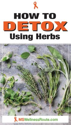 Learn how to help your body naturally detox by using herbs. #detox #detoxusingherbs #holistichealing Liver Detox, Body Detox, Healthy Lifestyle Tips, Healthy Living Tips, Wellness Tips, Health And Wellness, Dark Circles Under Eyes, Health Dinner, Health And Fitness Articles