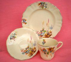j & g meakin patterns Vintage Wear, Vintage China, Earthenware, Alfred Meakin, Decorative Plates, Porcelain, Pottery, Antiques, Tableware