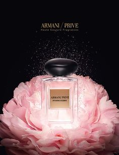 Pivoine Suzhou Fragrance by Giorgio Armani Still Life Photography, Beauty Photography, Cosmetic Photography, Perfume Ad, Perfume Bottles, Giorgio Armani, Beauty Ad, Beauty Products, Cosmetic Design