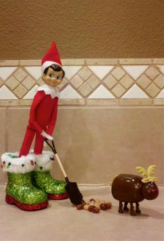 elf on the shelf : shoveling reindeer poop