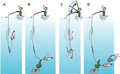 Movimientos de la ca�a para pescar calamares