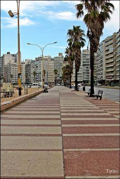 Vista de la Rambla en el barrio Pocitos, Montevideo-Uruguay