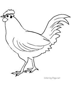 Big rooster coloring page