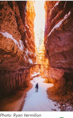Hike Wall Street in Bryce Canyon National Park, near Bryce, southern Utah: https://www.theoutbound.com/utah/hiking/hike-wall-street-in-bryce-canyon