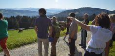 Geführte Wanderungen in Scheidegg