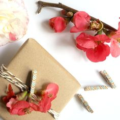 Gift Wrapping Clothespins  Zig Zag Blue Gray & Gold  by kaetoo