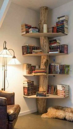 natural wood bookcase