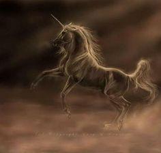 92 Best Of Unicorns Wings Images Mythological Creatures