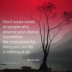 Don't Waste Words On People Who Deserve Your Silence !