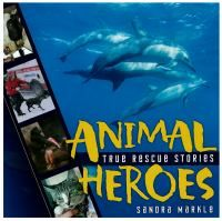 Find books about animal heroes in the FVRL catalog!