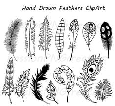 Hand Drawn Feathers Clipart, Digital Feathers clip art,  Doodle feathers. PNG files, EPS, Vector, For Personal and Commercial use