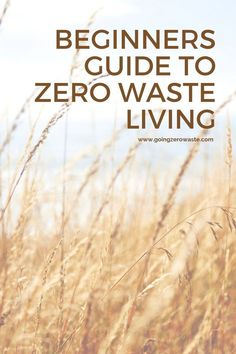 Four Tips for Starting a Zero Waste Lifestyle – Going Zero Waste 4 tips for starting a zero waste lifestyle and become a conscious consumer from wwww. Can You Find It, No Waste, Reduce Waste, Circular Economy, First Blog Post, Make Good Choices, Healthy Choices, What Happens When You, Zero Waste