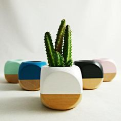A simple color-dipped planter lets its contents take center stage. #etsy