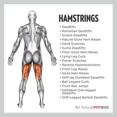 Hamstring exercises