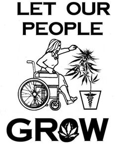 love this. although i'm not necessarily loving the wheelchair... because not all chronic illness is visible, let's remember this. but yes, all of us patients alike should be entitled to relief from our pain and suffering! support #medical #mj, and let our people #grow <3