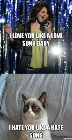 you go grumpy cat! - Grumpy Cat - Ideas of Grumpy Cat - you go grumpy cat! The post you go grumpy cat! appeared first on Cat Gig. Grumpy Cat Quotes, Funny Grumpy Cat Memes, Cat Jokes, Stupid Funny Memes, Funny Relatable Memes, Funny Cats, Hilarious, Angry Cat Memes, Cute Animal Memes