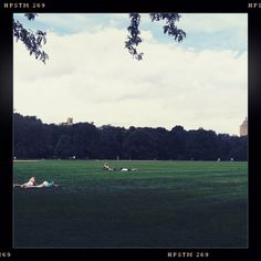 #nyc #central #park #great #lawn