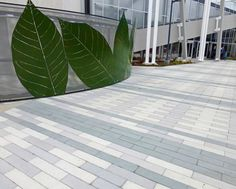 Stepstone, Inc is a manufacturer of Precast Concrete Pavers, Wall Caps, Stair Treads and Pool Coping with National Distribution. Hardscape Design, Pool Coping, Precast Concrete, Stair Treads, Beautiful Lines, Prefab Homes, Mountain View, Midcentury Modern, Plant Leaves