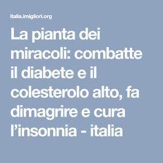 La pianta dei miracoli: combatte il diabete e il colesterolo alto, fa dimagrire e cura l'insonnia - italia