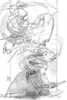 Raph vs. Usagi Yojimbo Full Fig.s for Johnatha by jeffreyedwards on DeviantArt