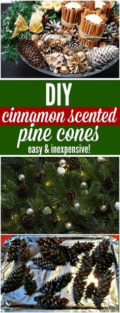cinnamon scented pine cones More